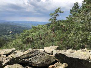 Šumava - pohled z Obřího hradu